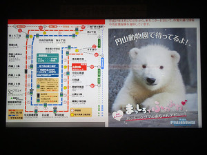 円山動物園の人気者と一緒