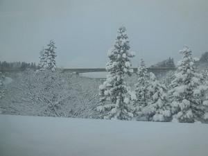 雪景色が美しい妙高高原付近の車窓から